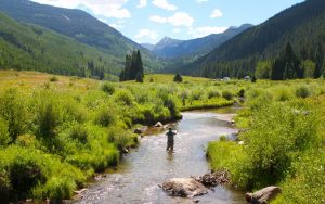 Fly fishing on small streams
