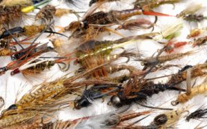 A variety of fly fishing midges