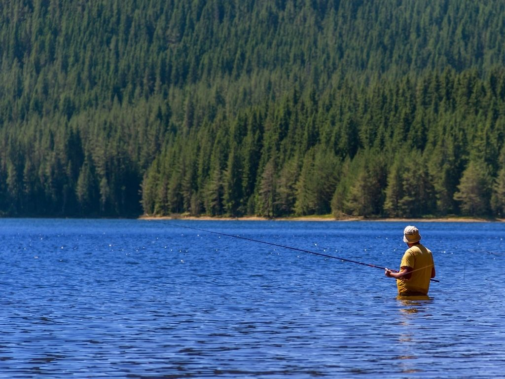 A fly angler fly fishing on a lake