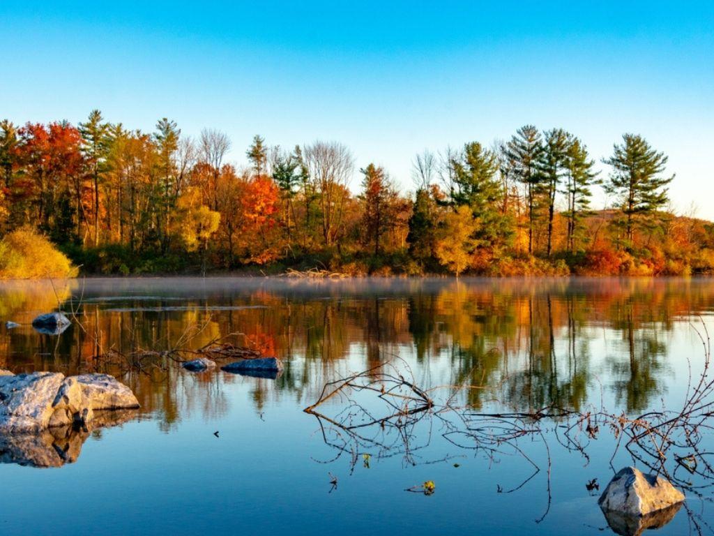 A stunning autumn trees reflecting in the water at Lake Nockamixon Pennsylvania