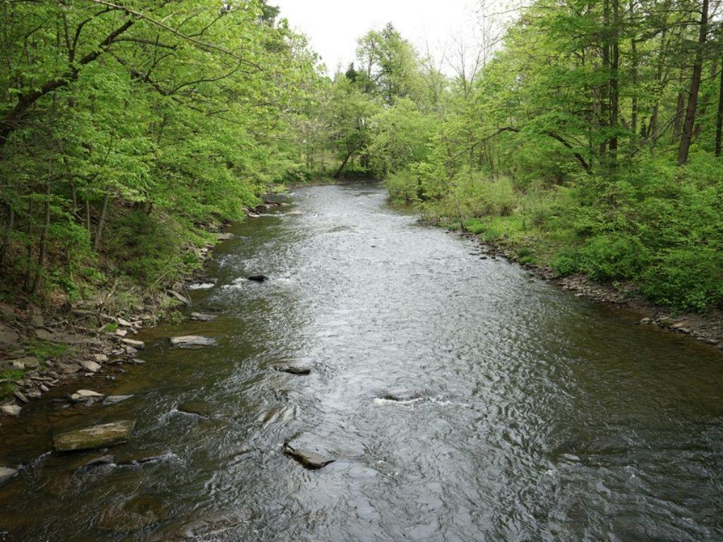 Spring Creek fly fishing in Pennsylvania