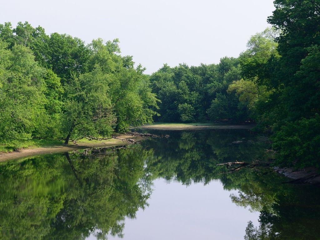fly fishing Farmington River in Connecticut