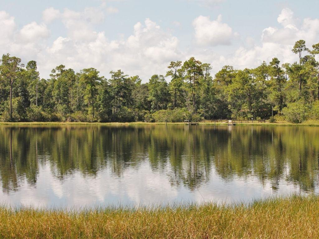 fly fishing Lake Osborne in florida