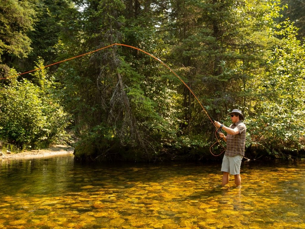 fly fishing in French Creek