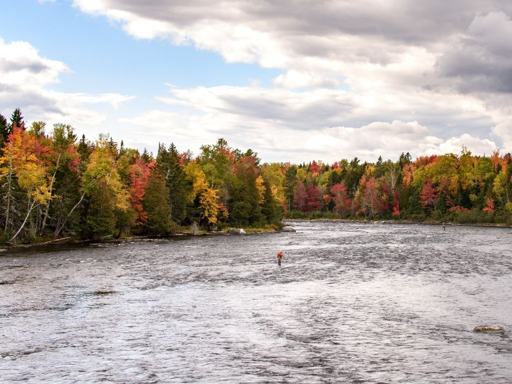 fly fishing in Maine
