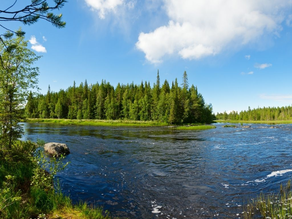 the beautiful Rapid River in Maine for fly fishing