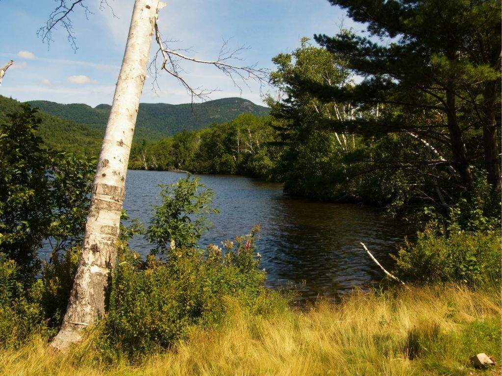 Sawyer Pond in New Hampshire for fly fishing