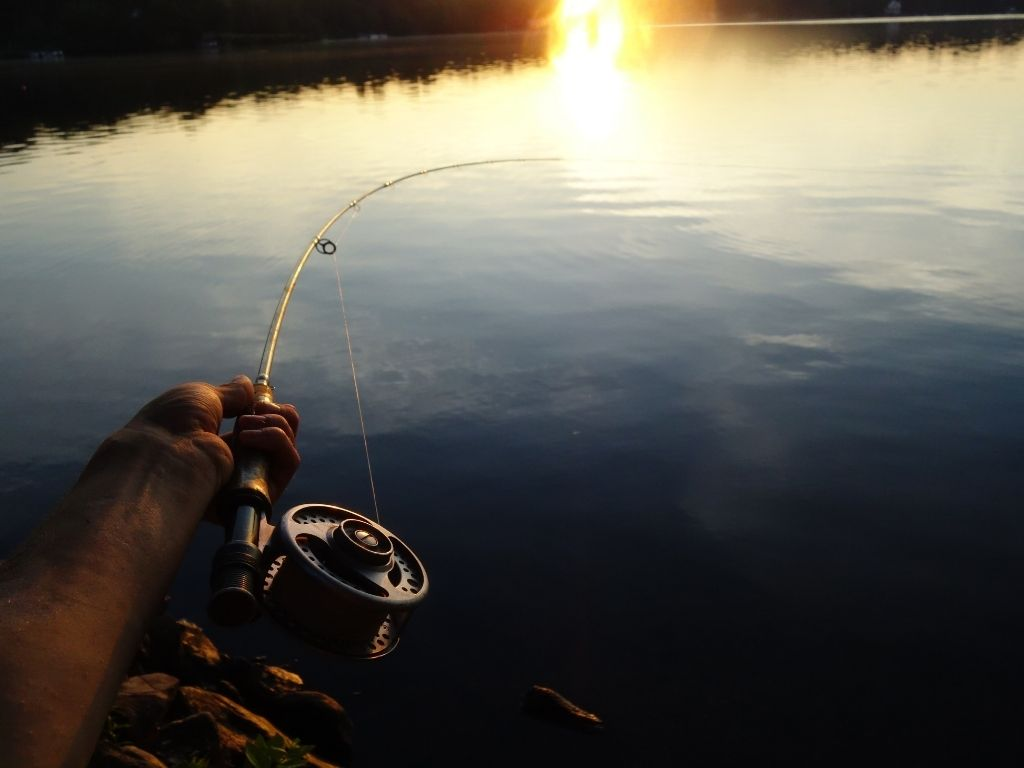 TFO Signature 2 rod review