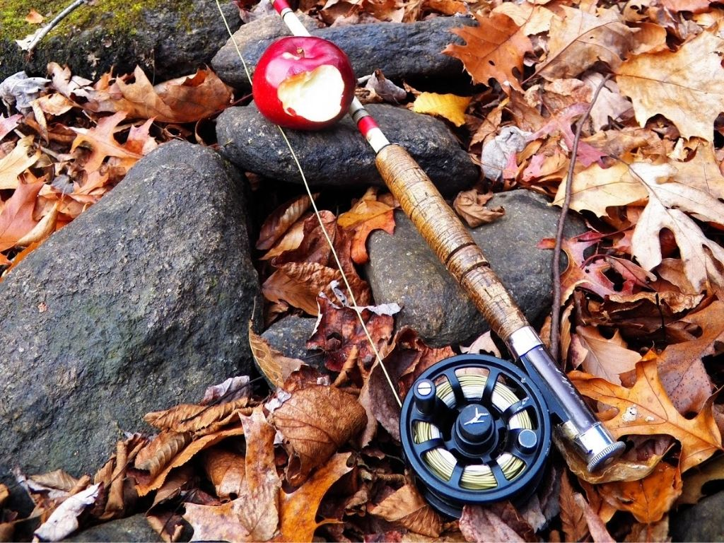 echo ion fly reel and a fly rod on the ground