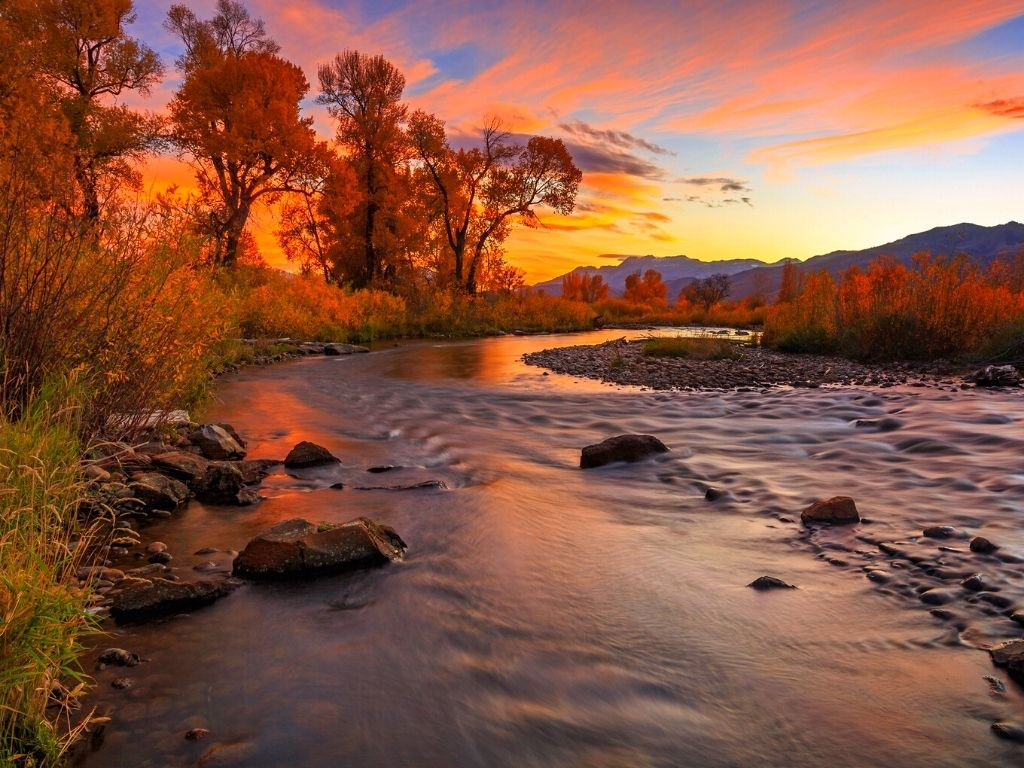 fly fishing Lower Provo River