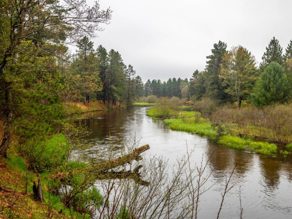 fly fishing the Manistee river outside of Grayling, Michigan