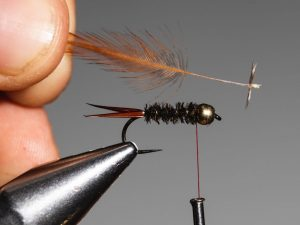 how to tie a Prince Nymph step 10