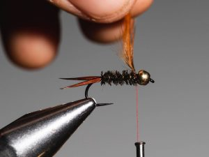 how to tie a Prince Nymph step 11