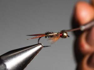 how to tie a Prince Nymph step 16