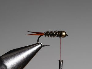 how to tie a Prince Nymph step 9