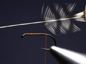 how to tie an elk hair caddis fly step 4