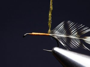 how to tie an elk hair caddis fly step 6