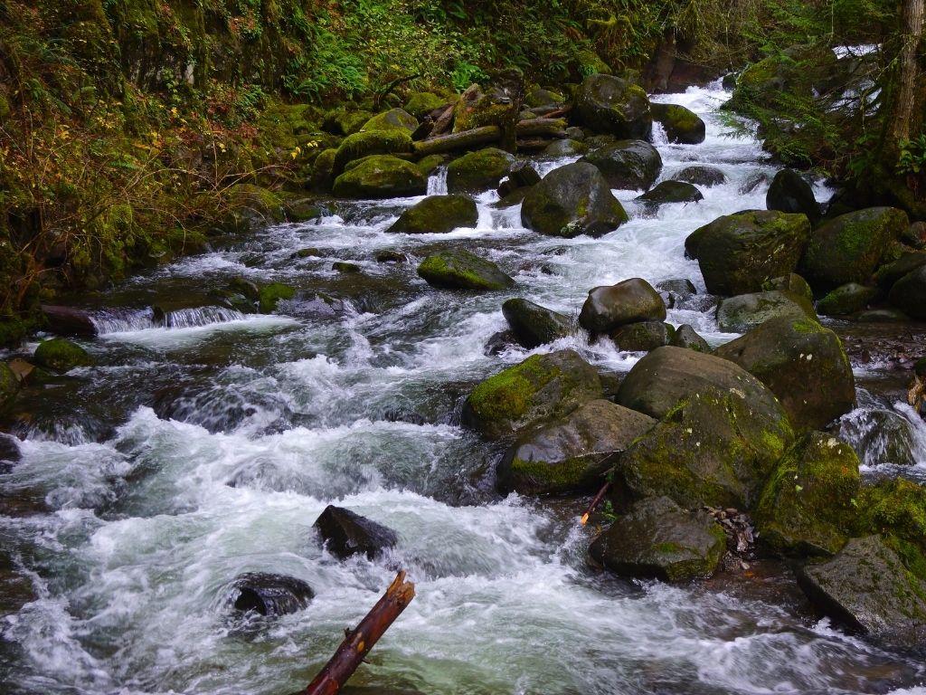 the stunning Coldwater Creek in deborah