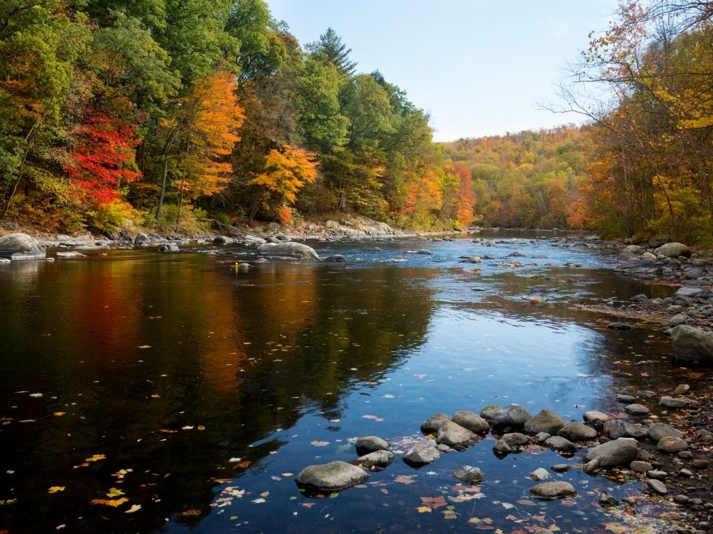 Best Spots for Fishing the Farmington River