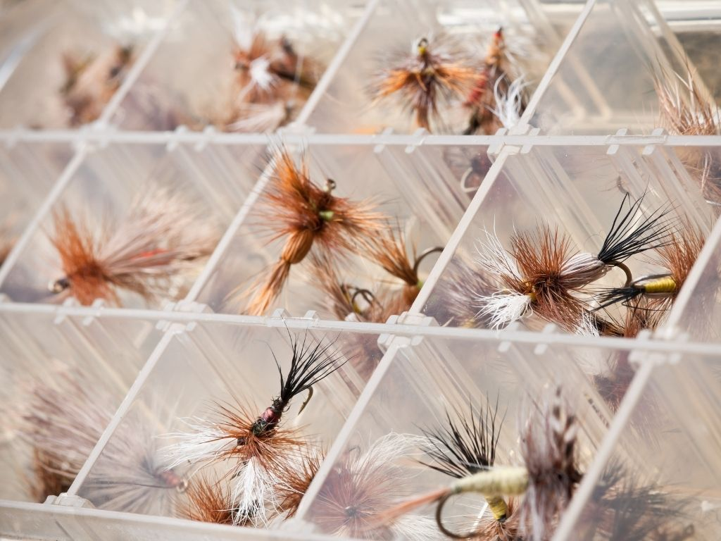 fly fishing dry flies
