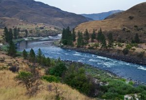fly fishing in Salmon River