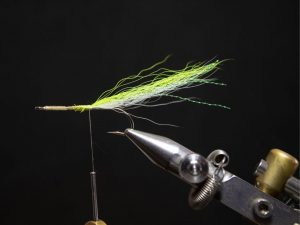 how to tie a gurgler fly step 10