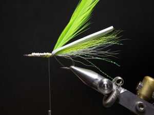 how to tie a gurgler fly step 13