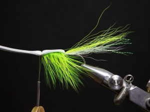 how to tie a gurgler fly step 18