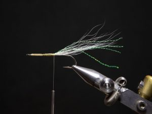 how to tie a gurgler fly step 8