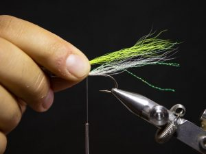 how to tie a gurgler fly step 9