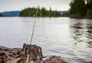 best 1 weight fly rods