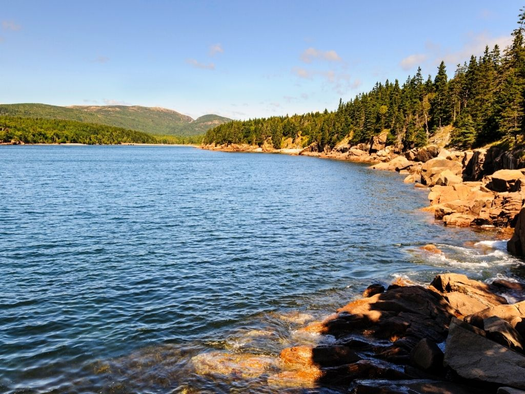 fly fishing at Otter Cove in Acadia National Park