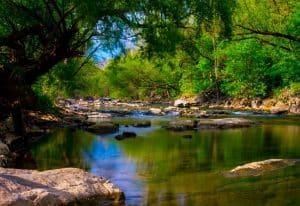 fly fishing Spring Creek