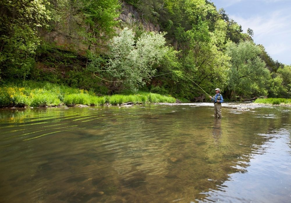 fly fishing gear for beginners