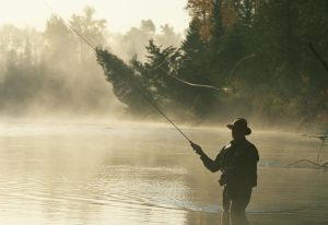 fly fishing rod actions